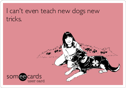 I can't even teach new dogs new tricks.