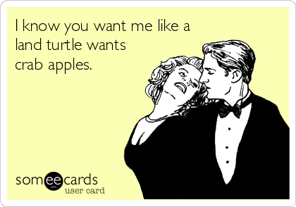 I know you want me like a land turtle wants crab apples.