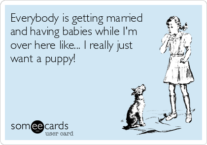 Everybody is getting married and having babies while I'm over here like... I really just want a puppy!
