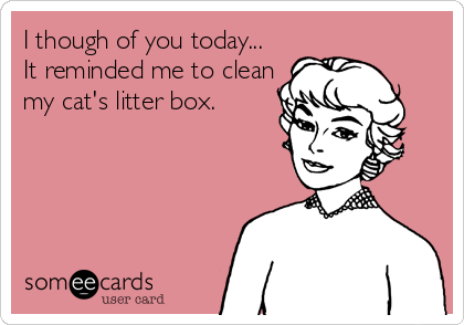 I though of you today... It reminded me to clean my cat's litter box.