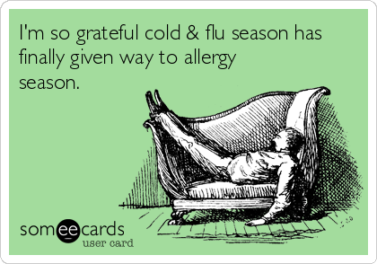 I'm so grateful cold & flu season has finally given way to allergy season.