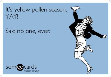 It's yellow pollen season,  YAY!  Said no one, ever.