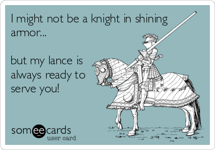I might not be a knight in shining armor...  but my lance is always ready to serve you!