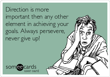 Direction is more important then any other element in achieving your goals. Always persevere, never give up!