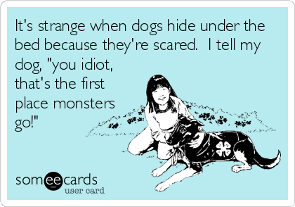 "It's strange when dogs hide under the bed because they're scared.  I tell my dog, ""you idiot, that's the first place monsters go!"""