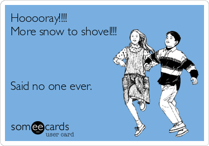 Hooooray!!!! More snow to shovel!!!    Said no one ever.