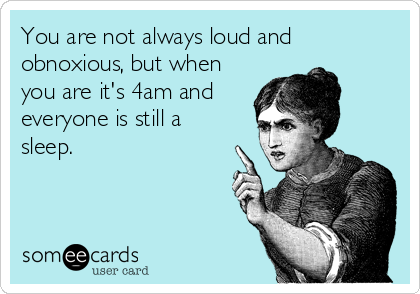 You are not always loud and obnoxious, but when you are it's 4am and everyone is still a sleep.