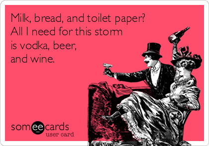 Milk, bread, and toilet paper? All I need for this storm is vodka, beer, and wine.