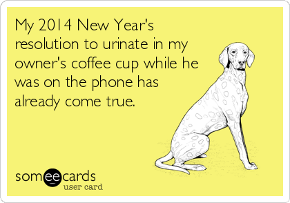 My 2014 New Year's resolution to urinate in my owner's coffee cup while he was on the phone has already come true.