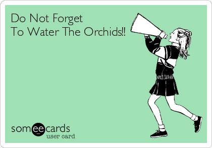 Do Not Forget  To Water The Orchids!!