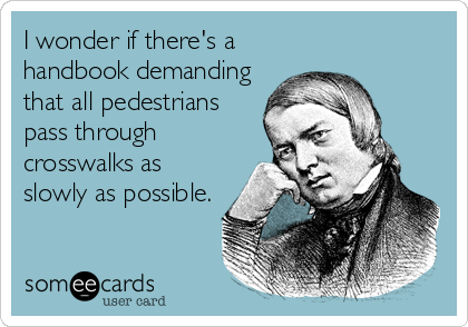 I wonder if there's a handbook demanding that all pedestrians pass through crosswalks as slowly as possible.