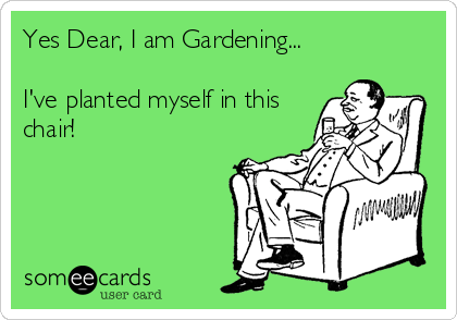 Yes Dear, I am Gardening...  I've planted myself in this chair!