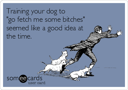 "Training your dog to ""go fetch me some bitches"" seemed like a good idea at the time."