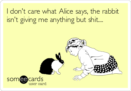 I don't care what Alice says, the rabbit isn't giving me anything but shit....