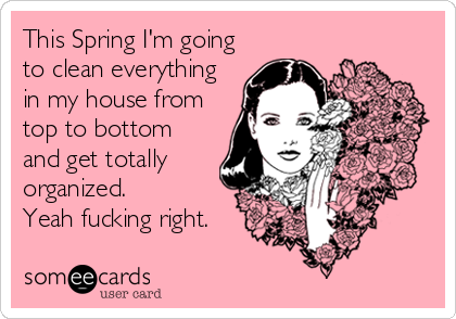 This Spring I'm going to clean everything in my house from top to bottom and get totally organized.  Yeah fucking right.