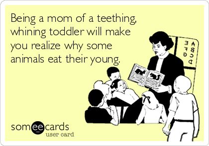 being a mom of a teething whining toddler will make you realize why