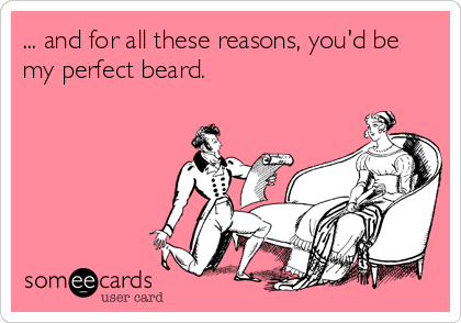 ... and for all these reasons, you'd be my perfect beard.