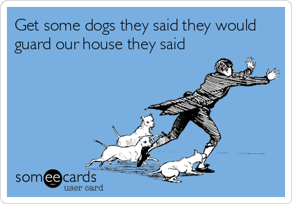 Get some dogs they said they would guard our house they said