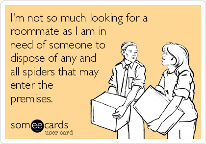 I'm not so much looking for a roommate as I am in need of someone to  dispose of any and all spiders that may enter the premises.
