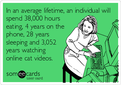In an average lifetime, an individual will spend 38,000 hours eating, 4 years on the phone, 28 years sleeping and 3,052 years watching online cat videos.