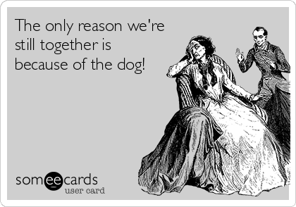 The only reason we're still together is because of the dog!