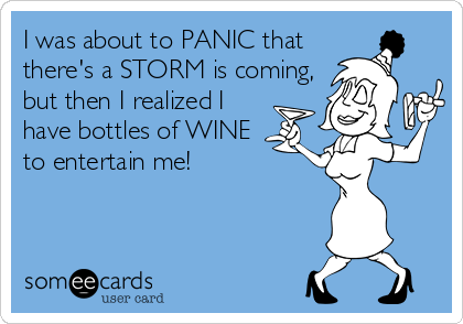 I was about to PANIC that there's a STORM is coming, but then I realized I have bottles of WINE to entertain me!