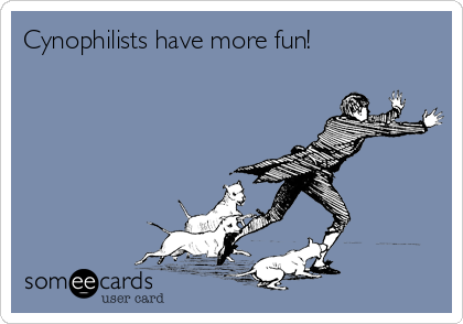 Cynophilists have more fun!