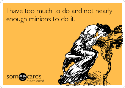 I Have Too Much To Do And Not Nearly Enough Minions To Do It.