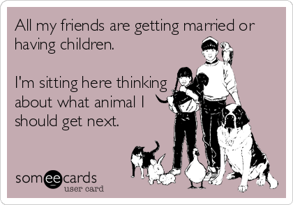 All my friends are getting married or having children.  I'm sitting here thinking about what animal I should get next.