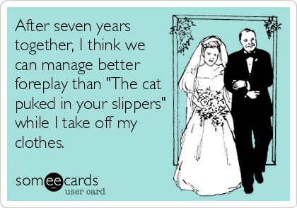 """After seven years together, I think we can manage better foreplay than """"The cat puked in your slippers"""" while I take off my clothes."""