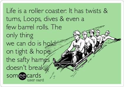 Life is a roller coaster: It has twists & turns, Loops, dives & even a few barrel rolls. The only thing we can do is hold on tight & hope the safty harnes doesn't break