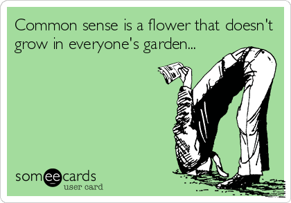 Common sense is a flower that doesn't grow in everyone's garden...