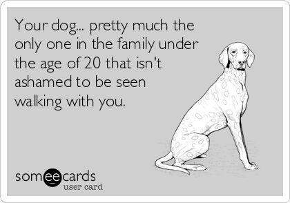 Your dog... pretty much the only one in the family under the age of 20 that isn't ashamed to be seen walking with you.