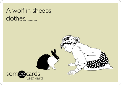 A wolf in sheeps clothes..........