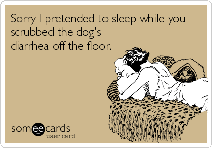 Sorry I pretended to sleep while you scrubbed the dog's diarrhea off the floor.