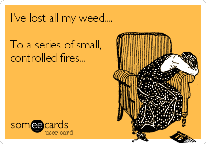 I've lost all my weed....  To a series of small, controlled fires...