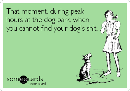 That moment, during peak hours at the dog park, when you cannot find your dog's shit.