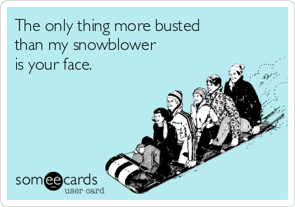 The only thing more busted than my snowblower is your face.