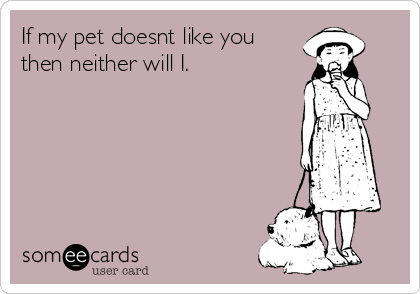 If my pet doesnt like you      then neither will I.