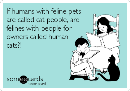 If humans with feline pets are called cat people, are felines with people for owners called human cats?!