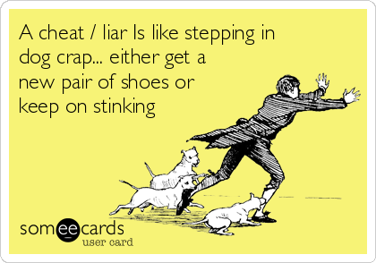 A cheat / liar Is like stepping in dog crap... either get a new pair of shoes or keep on stinking