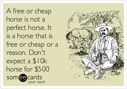 A free or cheap horse is not a perfect horse. It is a horse that is free or cheap or a reason. Don't expect a $10k horse for $500