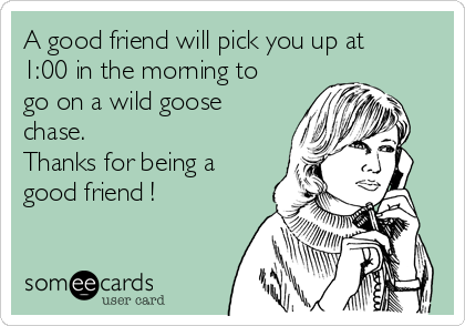 A good friend will pick you up at 1:00 in the morning to go on a wild goose chase. Thanks for being a good friend !
