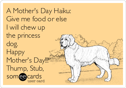 A Mother's Day Haiku: Give me food or else I will chew up the princess dog. Happy Mother's Day!!! Thump, Stub,