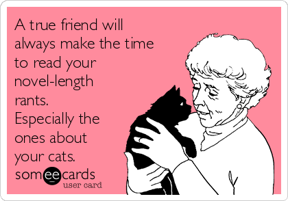 A true friend will always make the time to read your novel-length rants. Especially the ones about your cats.