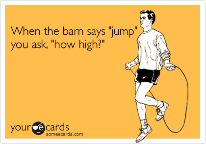 "When the barn says ""jump""