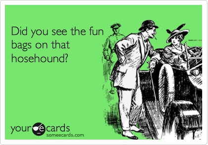 Did you see the fun