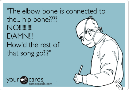 """""""The elbow bone is connected to the... hip bone????NO!!!!!!!!!!!DAMN!!!How'd the rest of that song go?!?"""""""