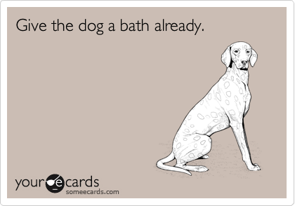 Give the dog a bath already.