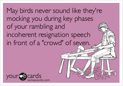 May birds never sound like they're mocking you during key phases